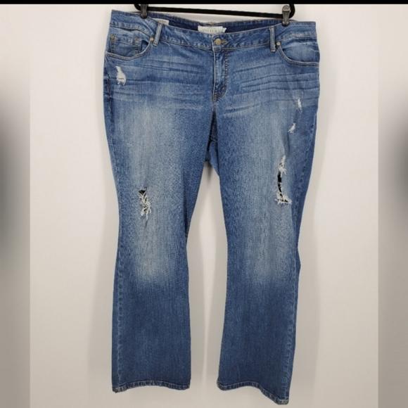 Torrid distressed bootcut jeans sz 24